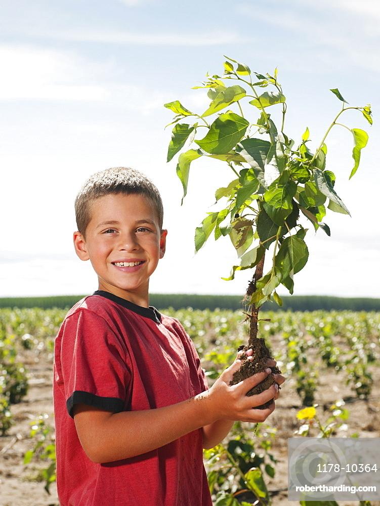 Boy (8-9) plating trees in tree farm
