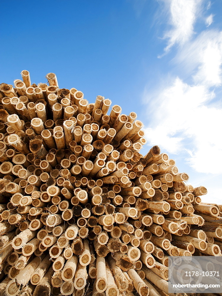 Stack of timber against blue sky