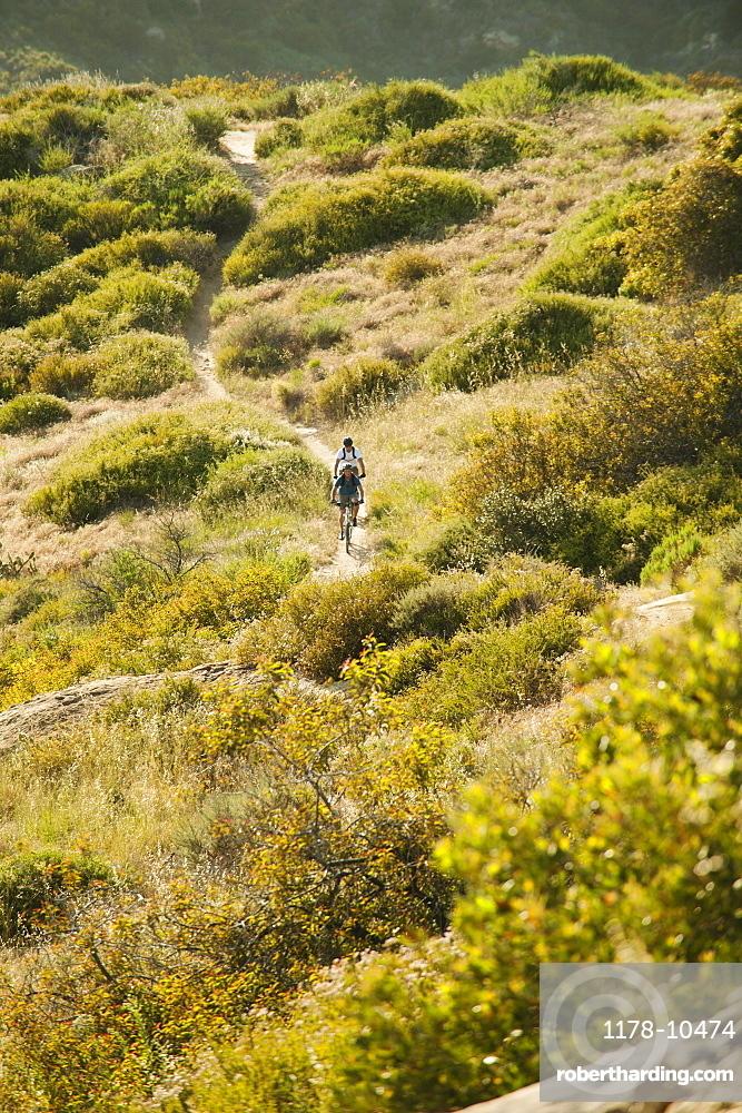 USA, California, Laguna Beach, Mountain bikers on trail