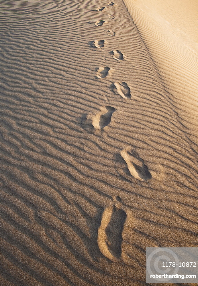 Sand dunes in the desert with footprints