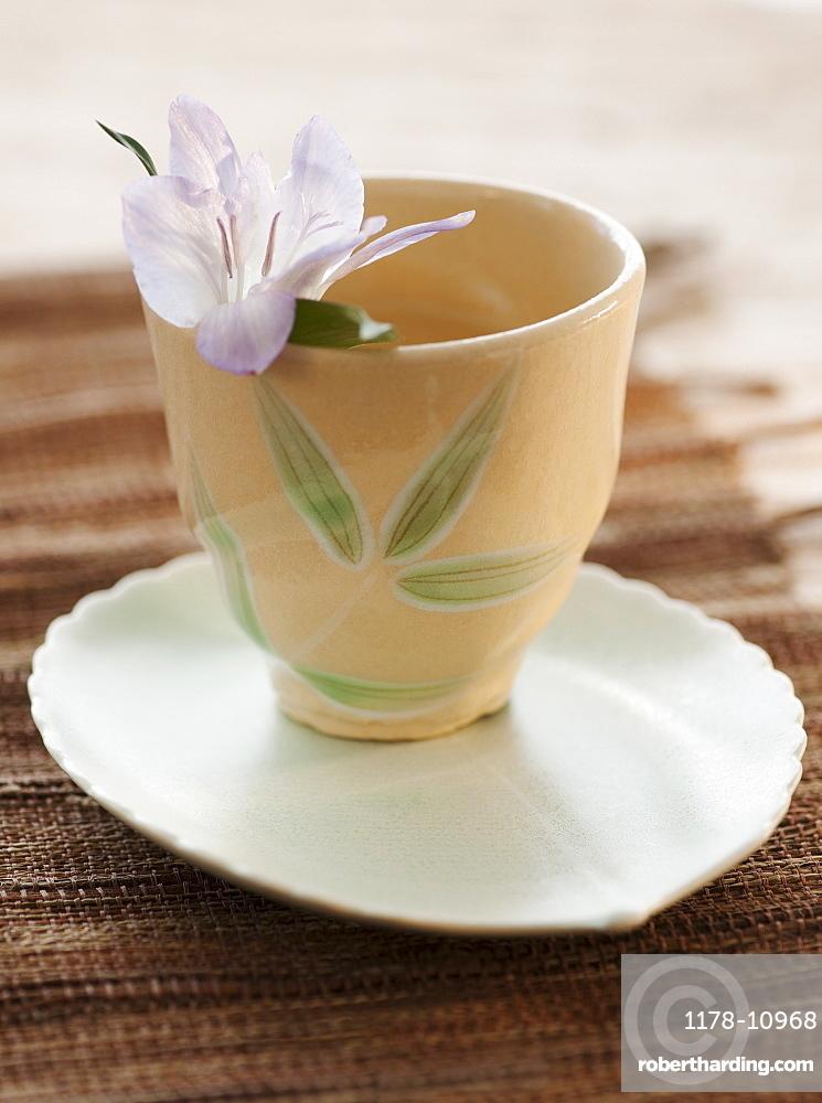 Tropical flower in tea cup