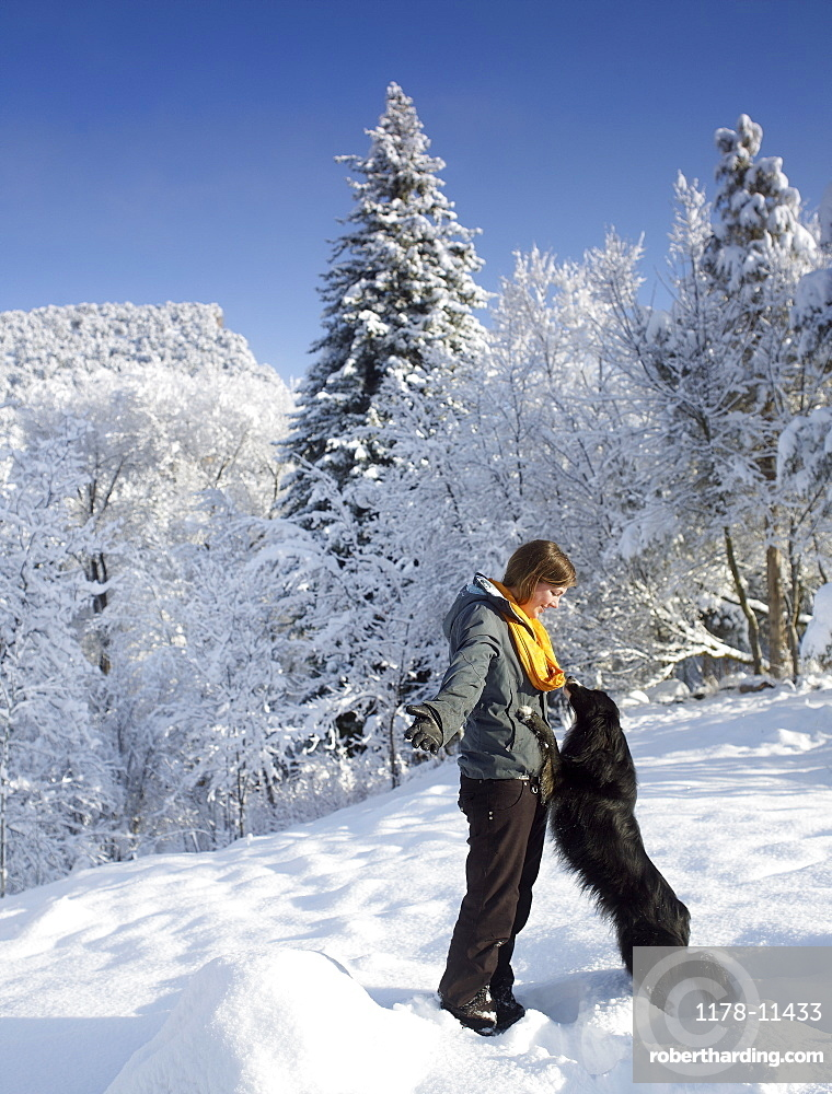 USA, Colorado, woman playing with dog in winter landscape