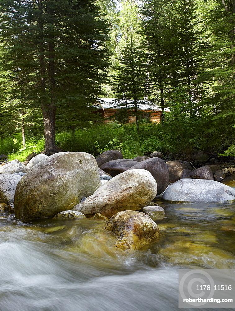 USA, Colorado, River flowing through forest