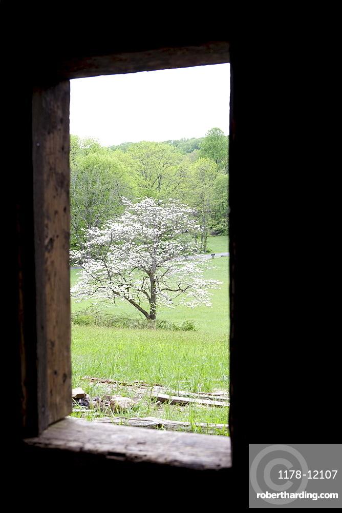 A window in a cabin