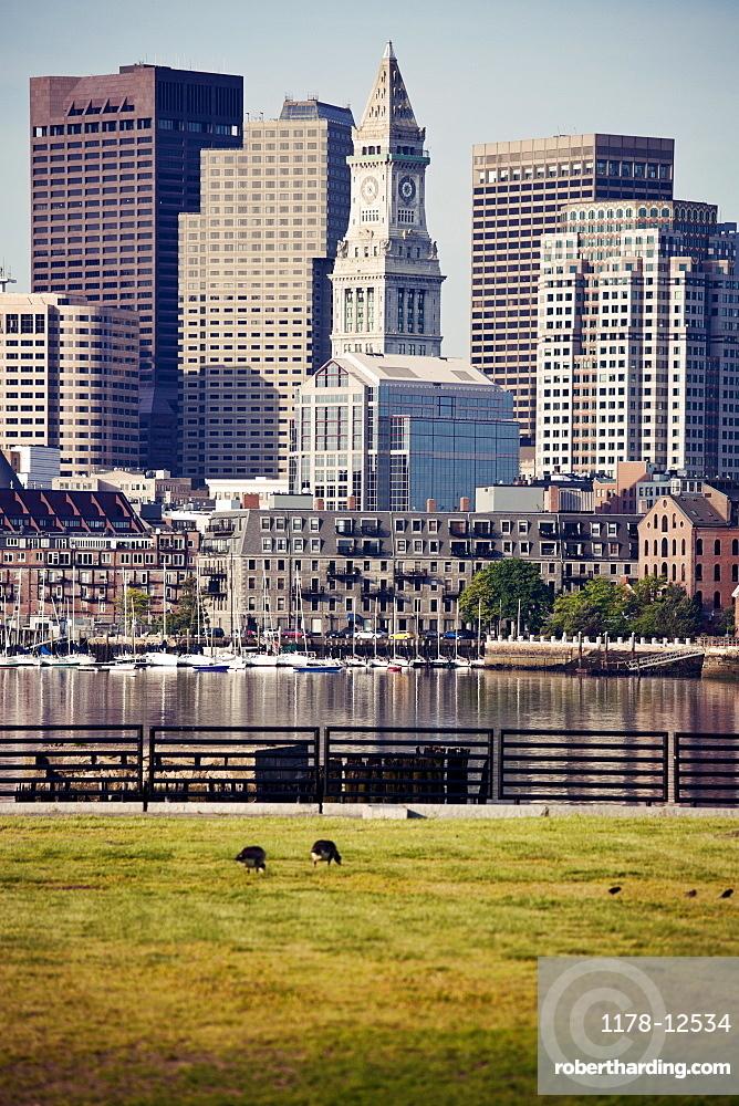 Boston, Massachusets with grass foreground