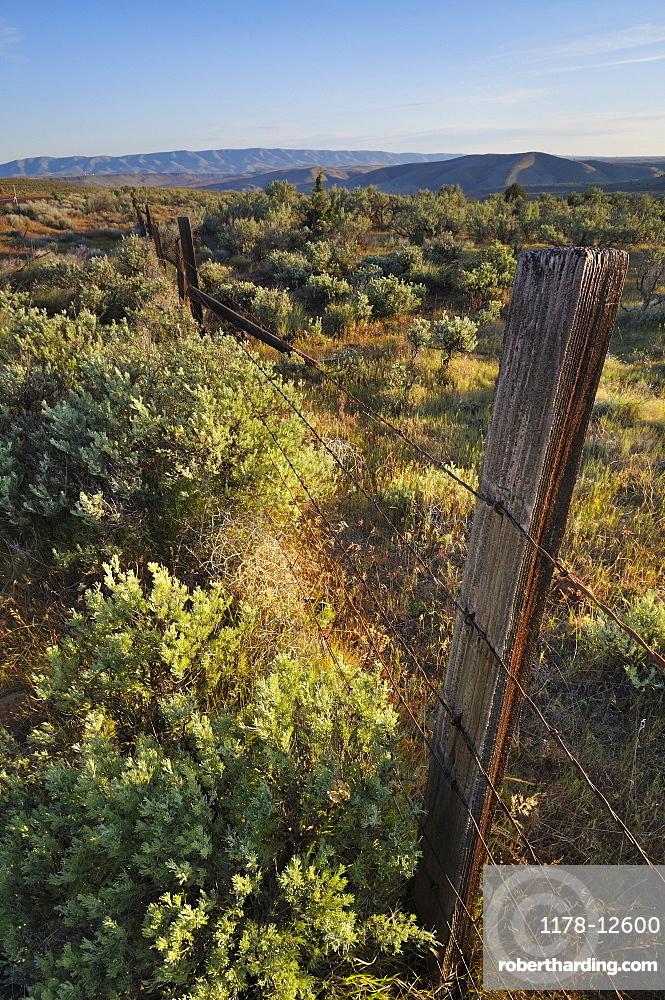 USA, Oregon, Old fence in desert