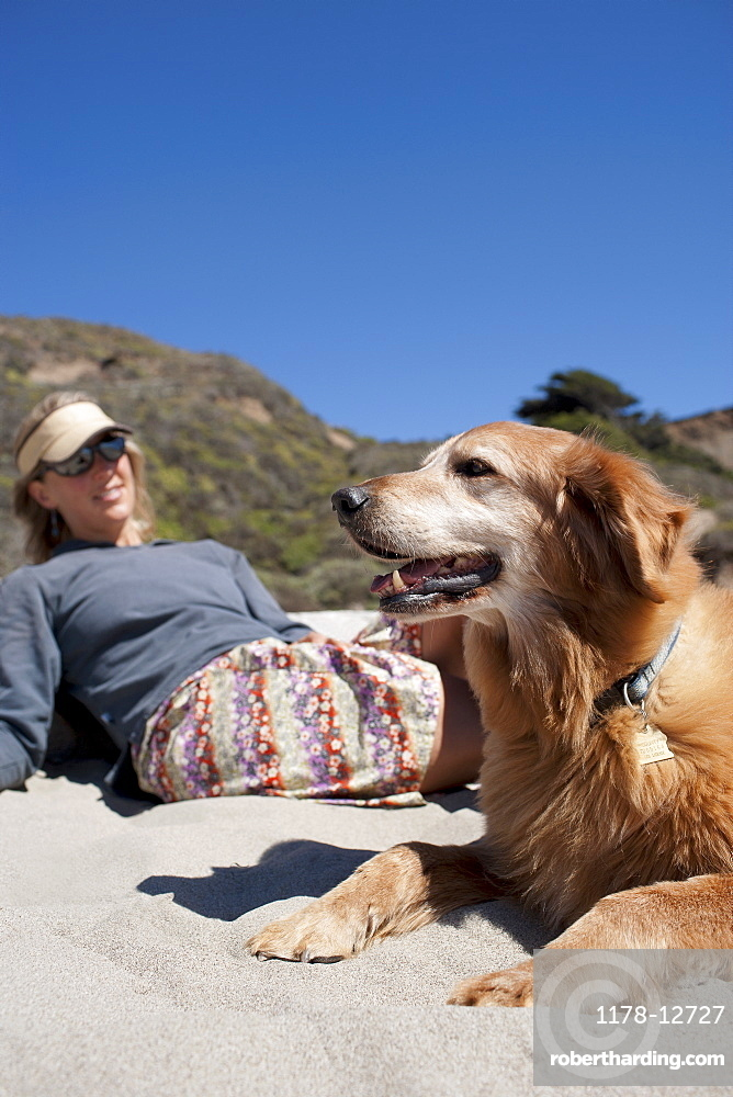 Golden retriever with owner on beach