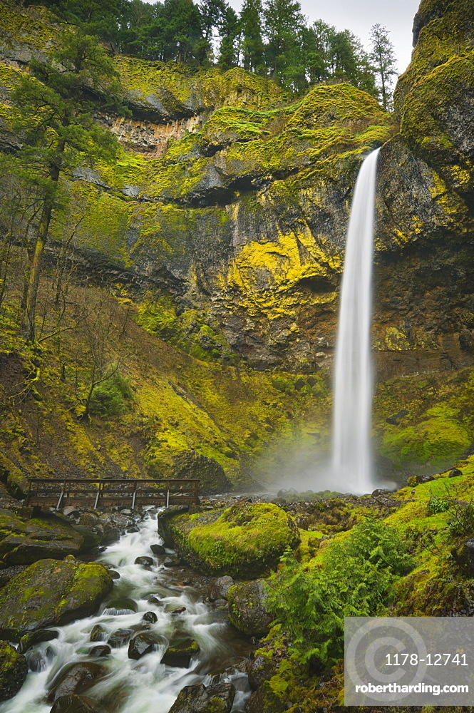 USA, Oregon, Multnomah County, Elowah Falls