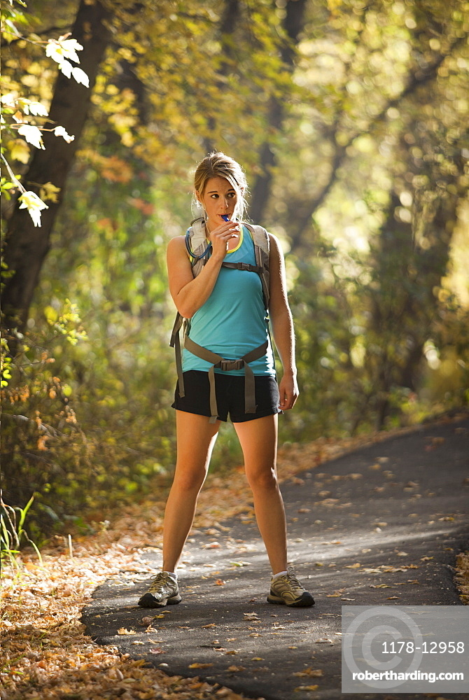 USA, Utah, young woman standing on footpath in forest