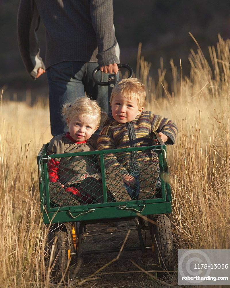 Father pulling children in wagon