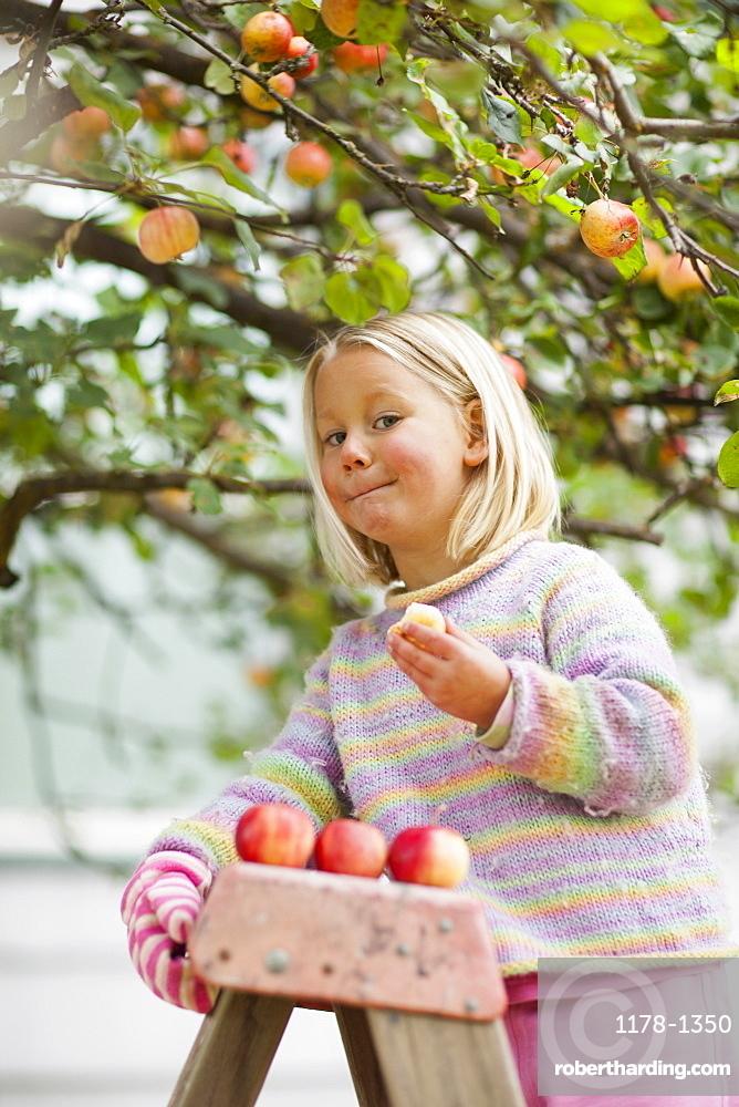 Girl (2-3) tasting apple
