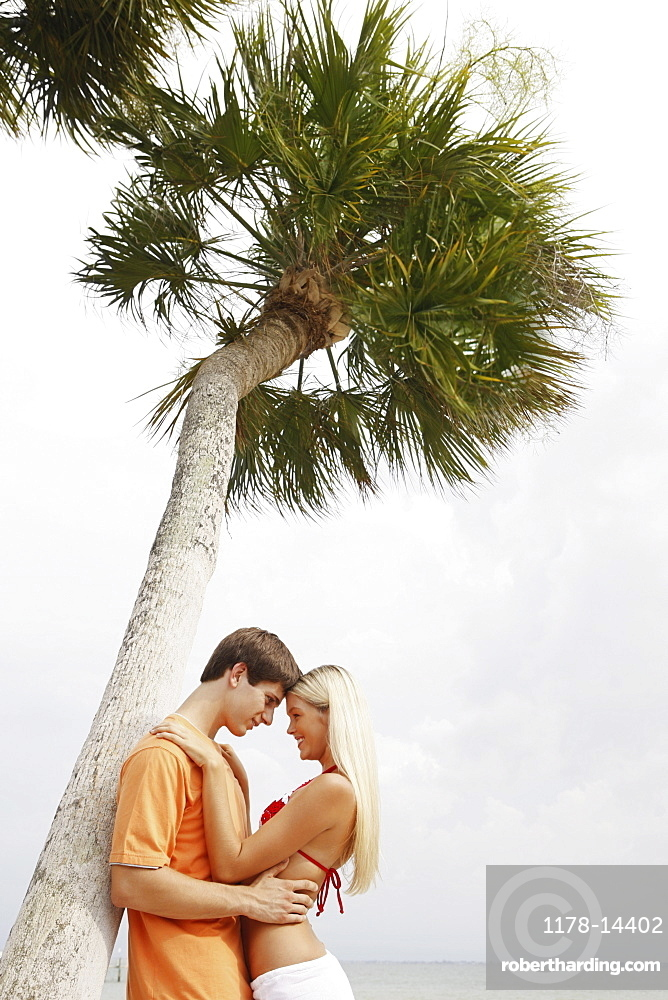 Couple hugging under palm tree