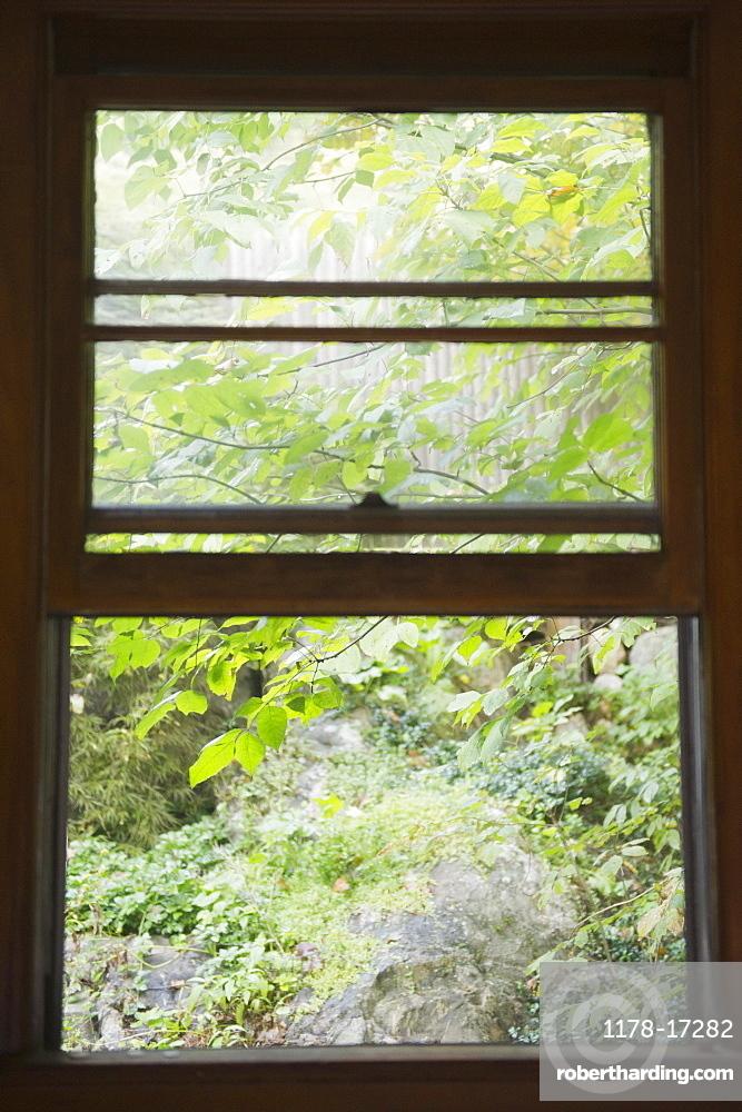 Roaring Brook Lake, Close up of branch behind window