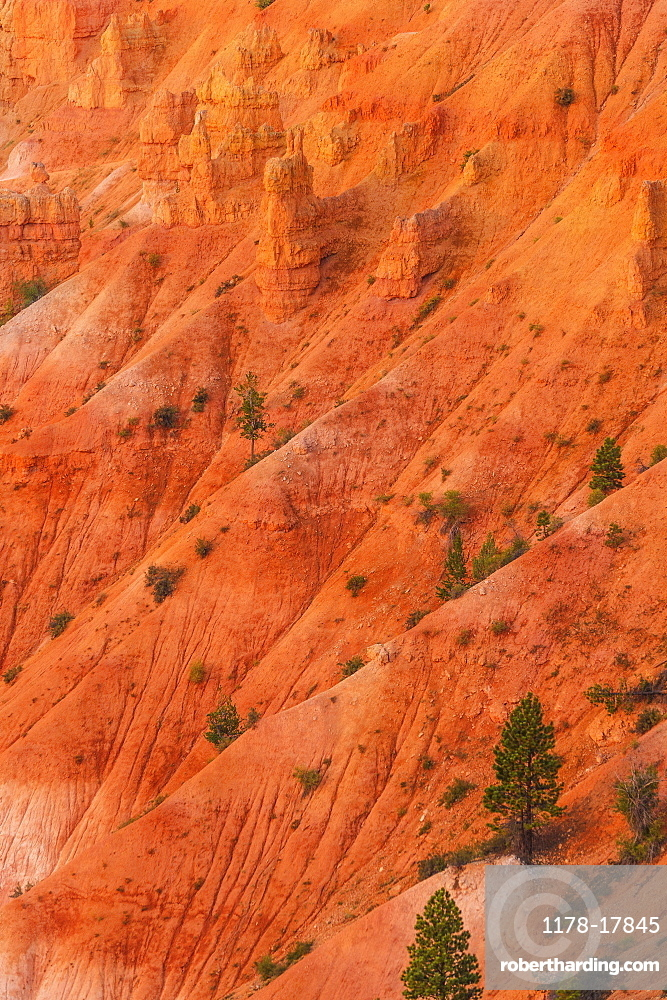 Bryce Canyon National Park, Bryce Canyon National Park, Utah, USA
