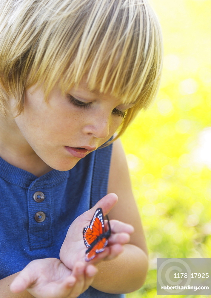 Boy (4-5) watching butterfly