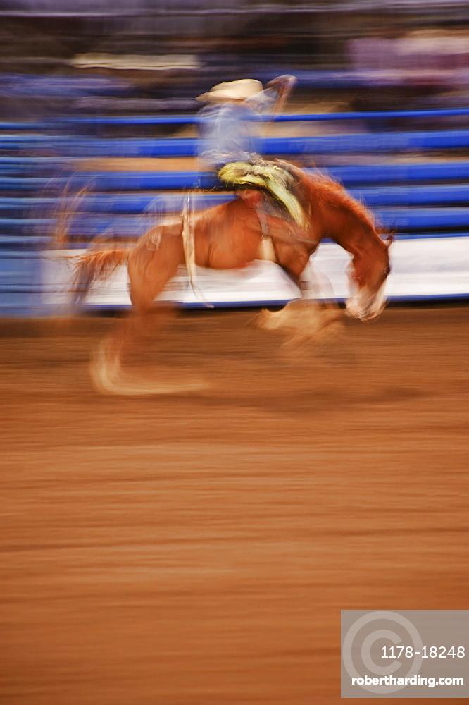Bronco riding