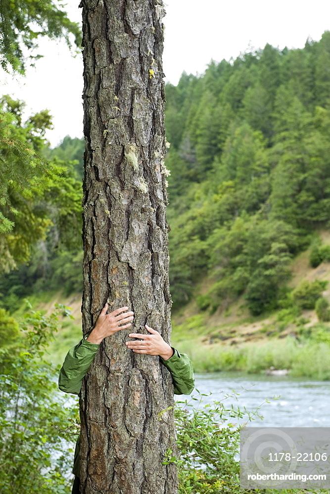 Hiker hugging tree