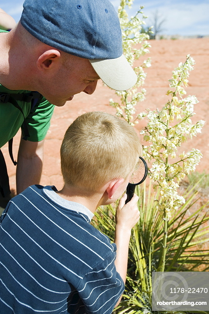 A father and son at Red Rock examining plants