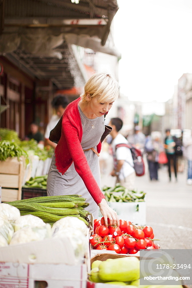 Woman pickig up fresh tomatoes at street market, USA, New York State, New York