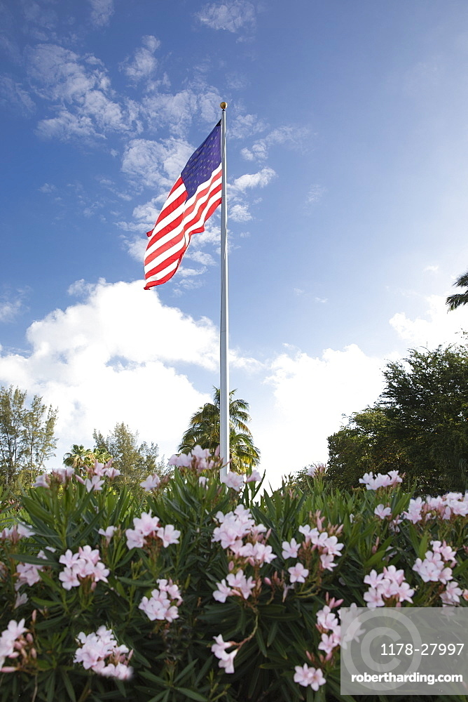 American flag in bush with flowers