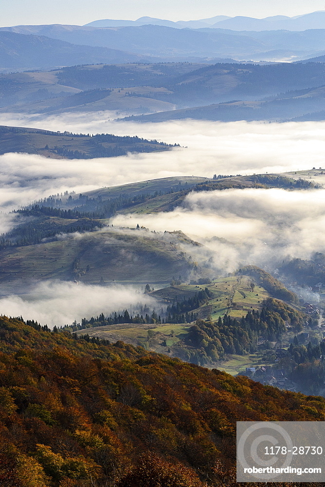 Ukraine, Zakarpattia region, Carpathians, Borzhava, Foggy hills of Carpathian Mountains at sunrise