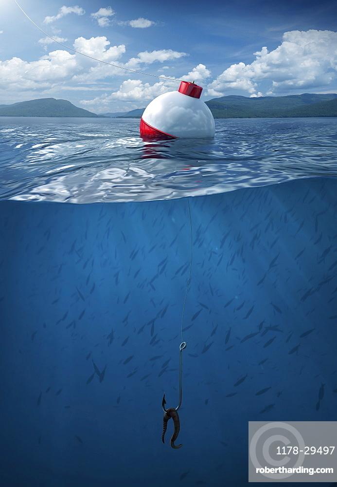 Fishing bobber floating on water