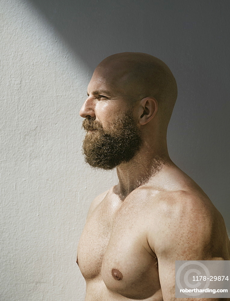 Profile of bald muscular man