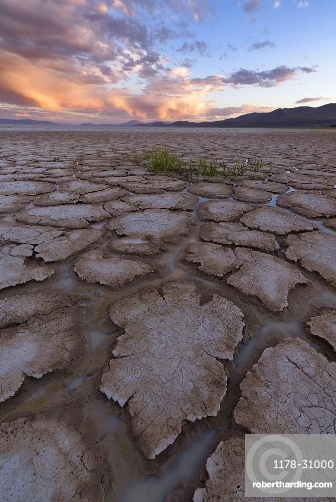 United States, Oregon, Cracked soil in desert at sunset
