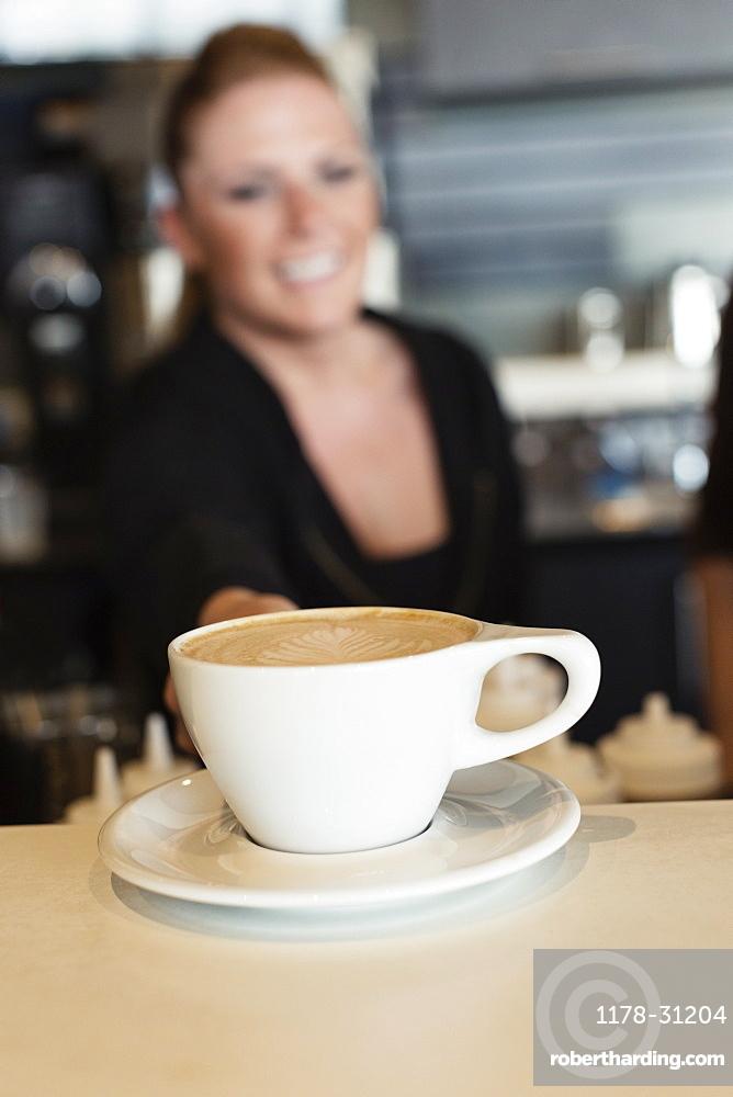 Coffee shop barista serving coffee