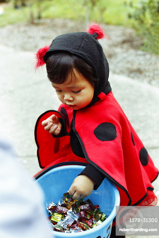 Girl wearing ladybird costume with trick or treat bucket