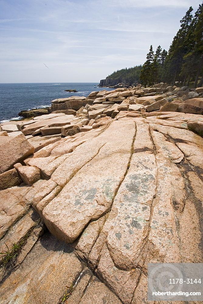 Rocky coast near Otter Cliffs Acadia Maine
