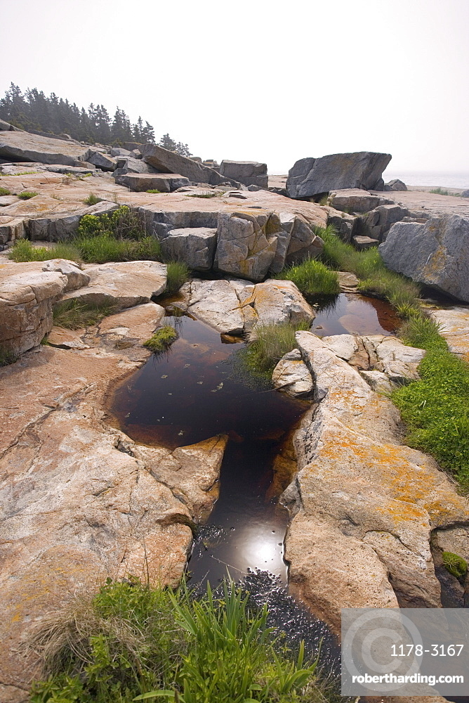 Rocky Maine coast in Acadia National Park