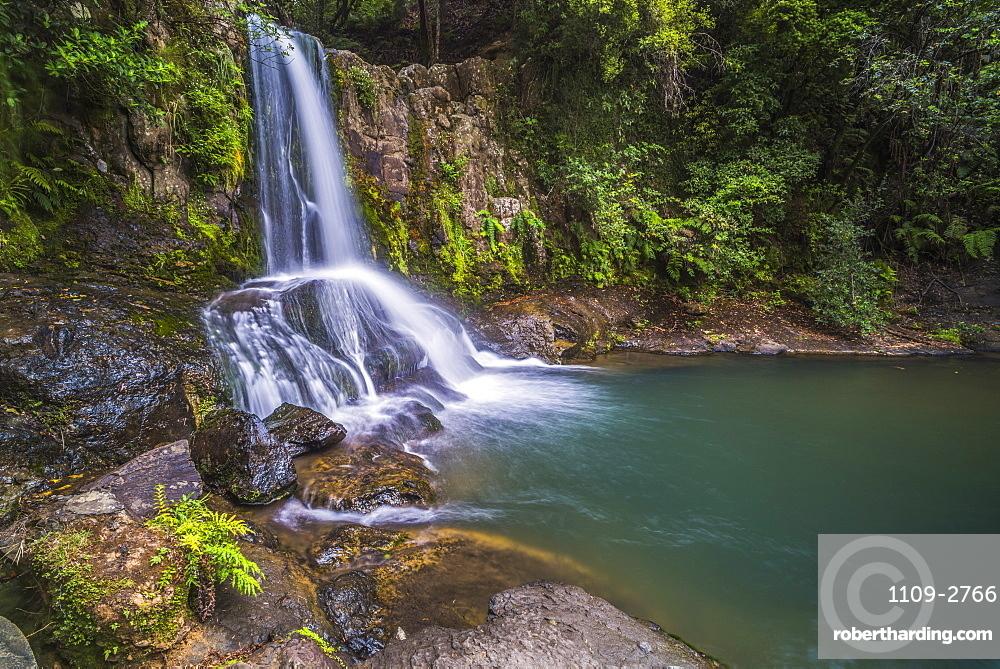 Waiau Falls, a waterfall on Road 309, Coromandel Peninsula, North Island, New Zealand, Pacific