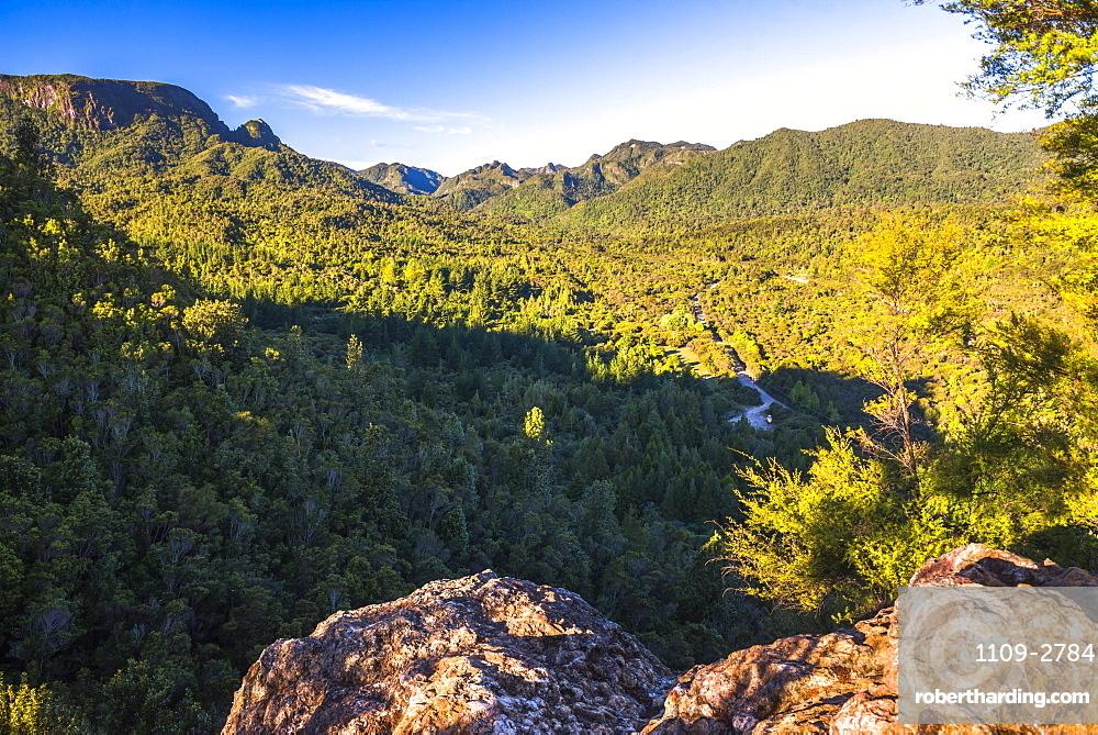 Kauaeranga Valley, Coromandel Forest Park, Coromandel Peninsula, North Island, New Zealand, Pacific