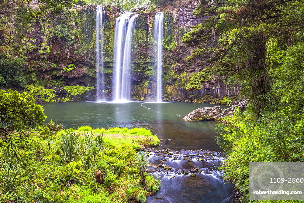 Whangarei Falls, a popular waterfall in the Northlands Region of North Island, New Zealand, Pacific