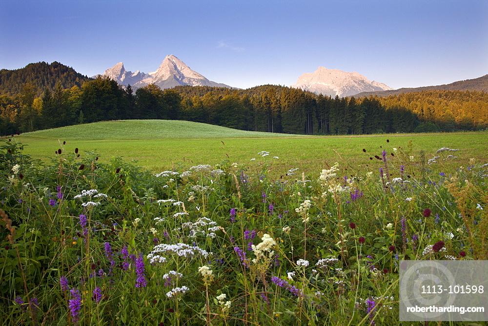Watzmann and Hochkalter in the morning light, Berchtesgaden region, Berchtesgaden National Park, Upper Bavaria, Germany