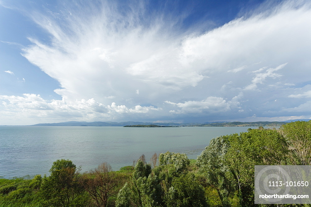 Lago Trasimeno, lake, province of Perugia, Umbria, Italy, Europe