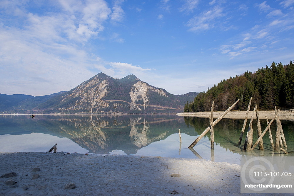 Wooden poles on the shore of Walchensee at low tide overlooking the Herzogstand, Walchensee, Bavaria, Germany