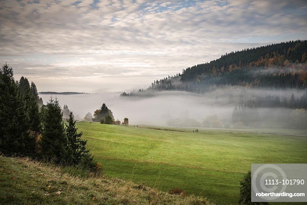 Mist rising through the valley close to Bernau im Schwarzwald, Black Forest, Baden-Wuerttemberg, Germany