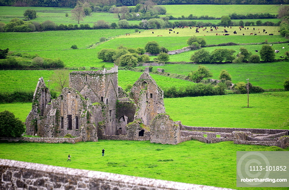 View from Rock of Cashel to the ruins of the Cathedral, Cashel, County Tipperary, Ireland