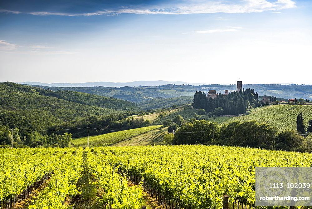 Badia di Passignano, near Greve, Chianti, Tuscany, Italy