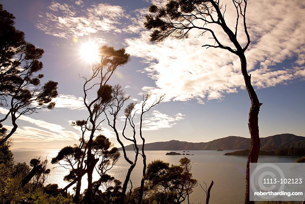 View from the top of Motuara Island to Long Island, Motuara Island, Outer Queen Charlotte Sound, Marlborough, South Island, New