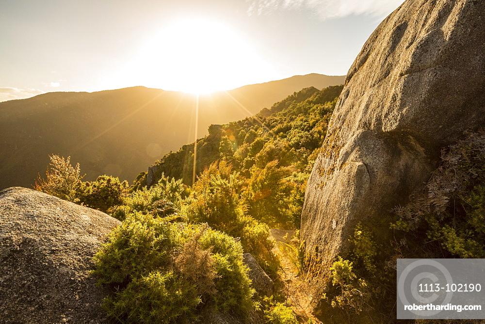 Sunset at Castle Rocks, Abel Tasman National Park, South Island, New Zealand