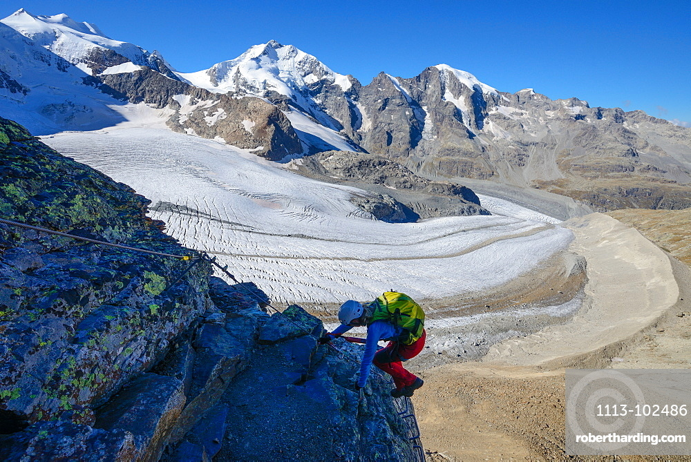 Woman climbing the via ferrata at Piz Trovat with view to Bellavista (3922 m), Piz Bernina (4049 m), Piz Morteratsch (3751 m) as well as Pers- and Morteratsch glacier, Engadin, Grisons, Switzerland