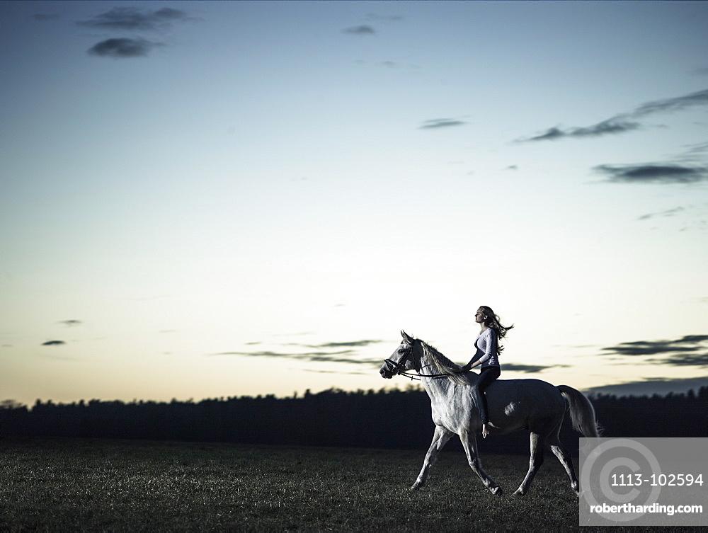 girl riding her horse at dusk, Freising, Bavaria, Germany
