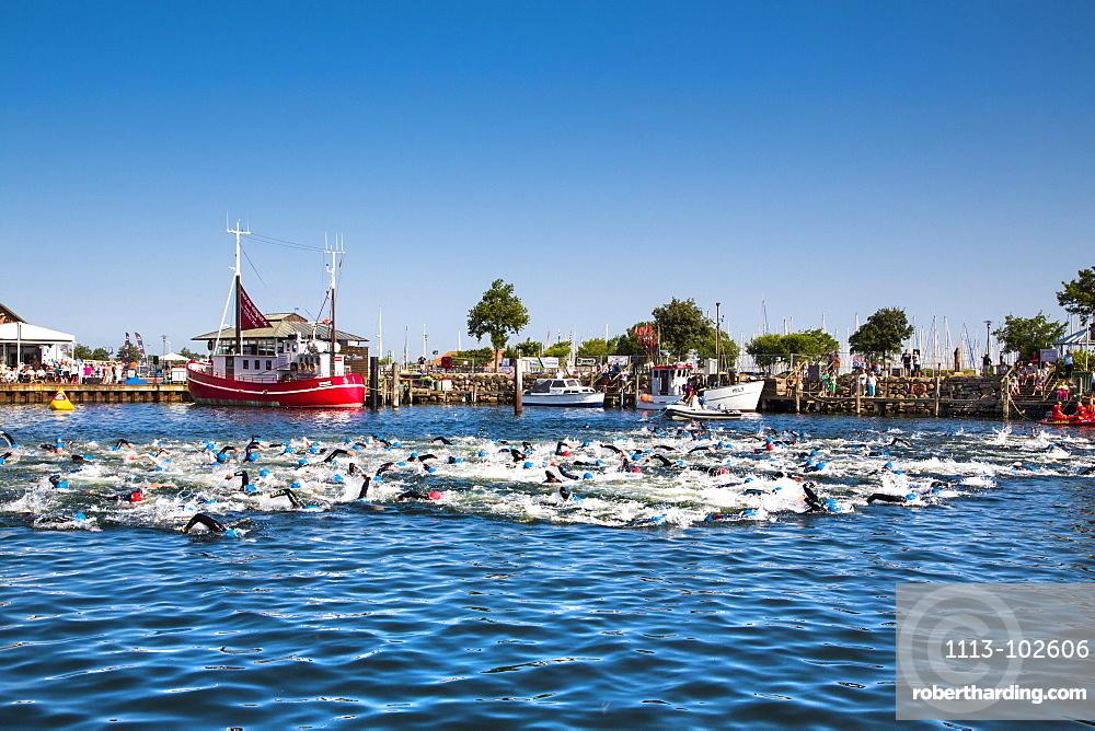 People swimming in the harbour, Triathlon, Heiligenhafen, Baltic Coast, Schleswig-Holstein, Germany