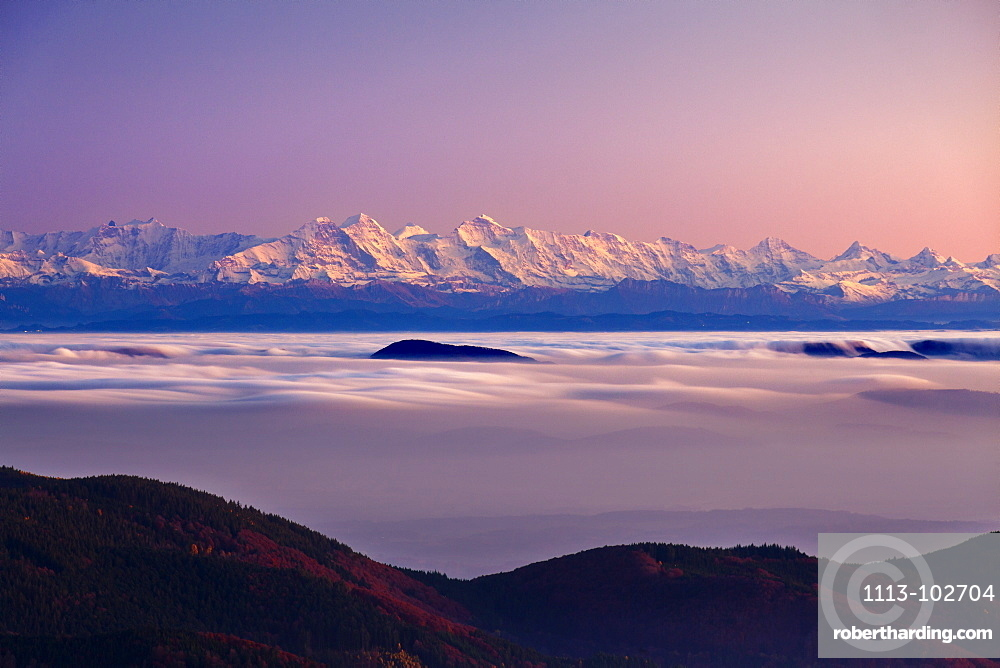 View from Belchen over the fog towards the Alps with Eiger, Moench and Jungfrau, Black Forest, Baden-Wuerttemberg, Germany