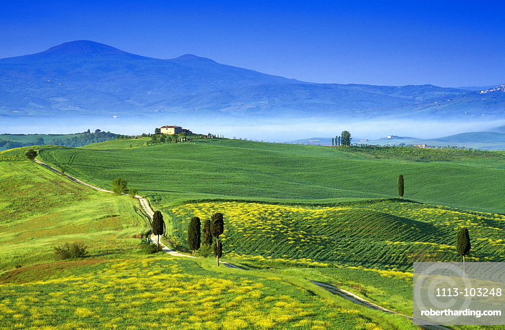 Scenery with country house under blue sky, view to Monte Amiata, Val d´Orcia, Tuscany, Italy, Europe