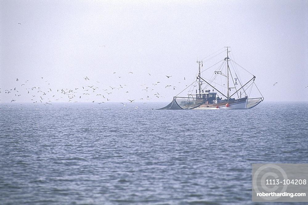 Shrimp Boat in Wadden Sea, Germany