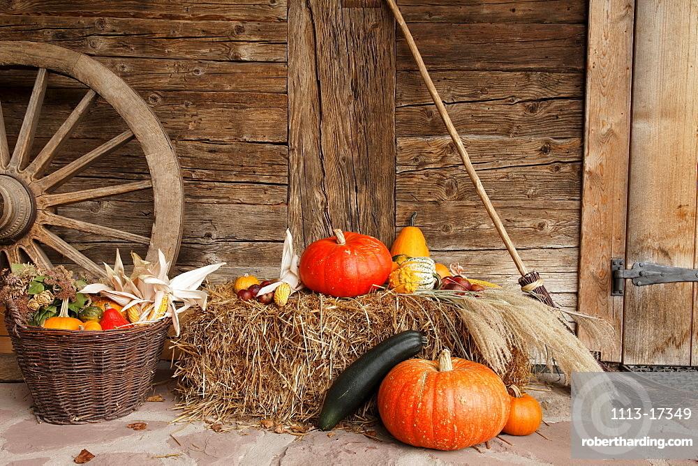 Autumn decoration, farm near Wolfach, Baden-Wurttemberg, Germany